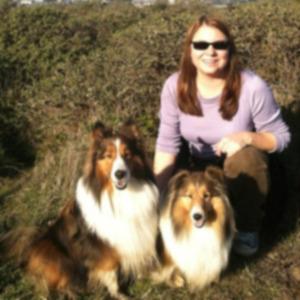 Собака выжила в аварии и воссоединилась с хозяином через 53 дня
