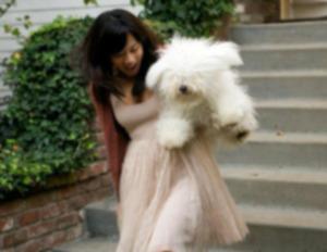 Собака идет под венец невесты на свадьбе Марка Цукерберга