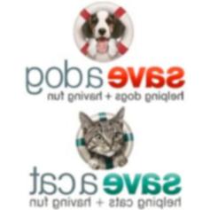 Пользователи приложения Facebook собирают более 200000 долларов в виде пожертвований в приют и спасательные службы для животных