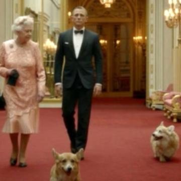 Две собаки королевы Англии умерли