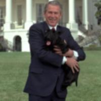 Бывший Первый Пёс, Барни Буш скончался