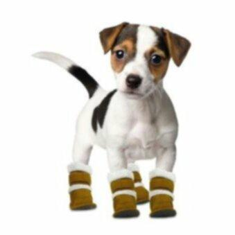 Сапоги для собак