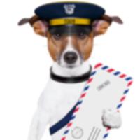 Почтовые работники призывают владельцев собак помнить о Национальной неделе предотвращения укусов собак