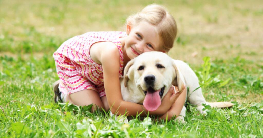 10 способов обеспечить безопасные встречи между собаками и людьми