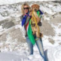 Бывший бродяга стал первой собакой, покорившей Эверест