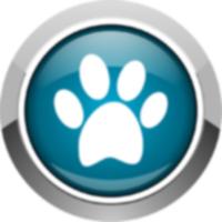 10 лучших приложений для домашних животных