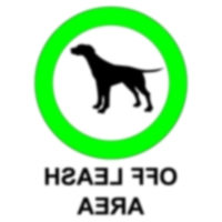 Дети в парке для собак
