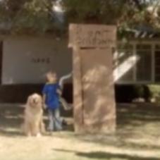 Два рекламных ролика Doritos с участием собак будут транслироваться во время Суперкубка XLVIII