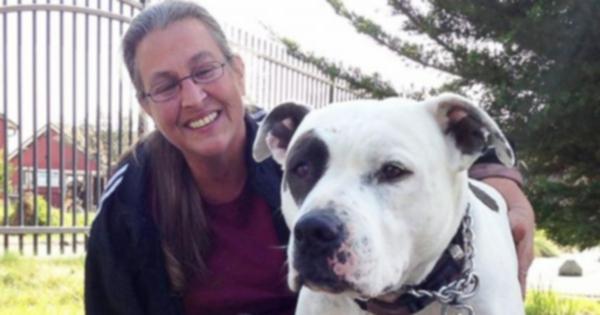 Семья предпочла бы остаться без дома, чем бросить собаку