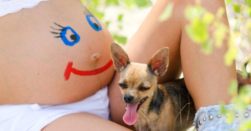 Doggy doulas: Подготовка собаки к рождению человека