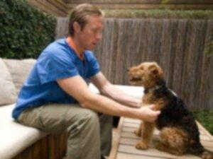 IMHA (иммуноопосредованная гемолитическая анемия) и интегративная ветеринария