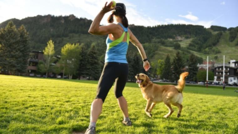 3 способа помочь вашей собаке похудеть
