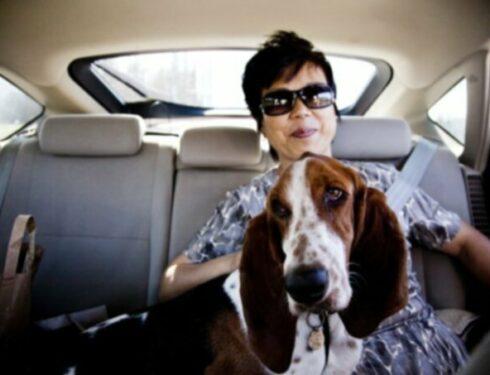 Как я могу помочь защитить мою собаку от автомобильной болезни?