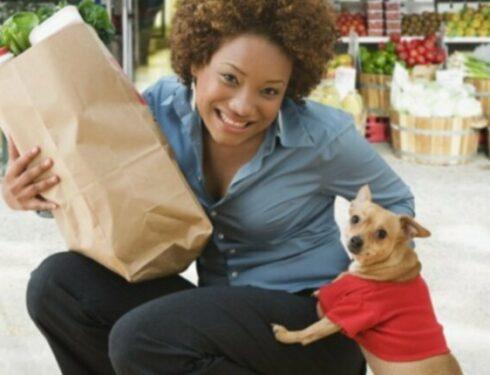 10 вещей, которые вы должны добавлять в корм своей собаки