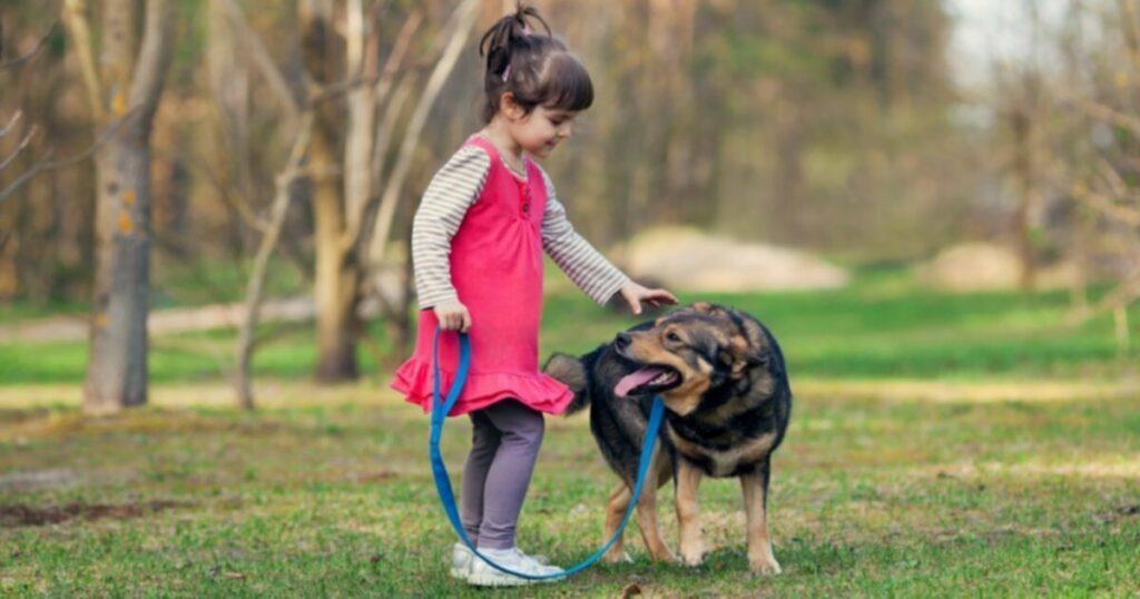 Лучшие собаки для детей