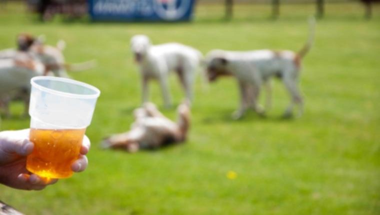 Приятные собаки на пивных банках! Ale Industries объединилась с East Bay SPCA для содействия усыновлению