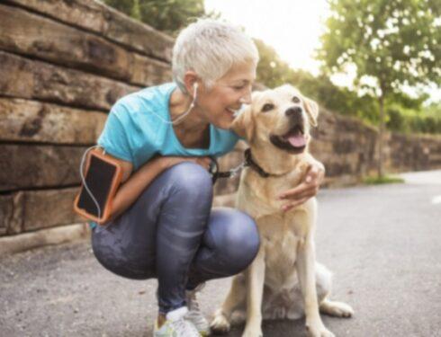 Октябрь - месяц благополучия домашних животных: 10 советов по оздоровлению собак